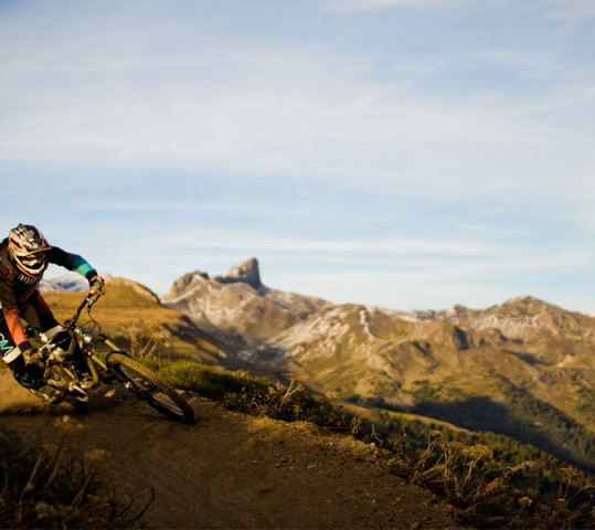 Bike safari